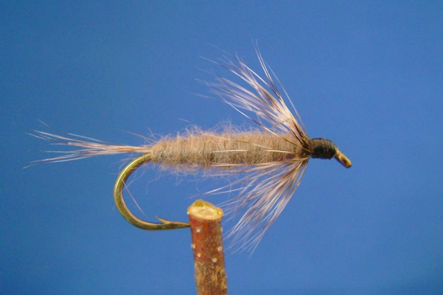 Gray nymph dan 39 s fly shop and guide service fishing for Fly fishing shops near me